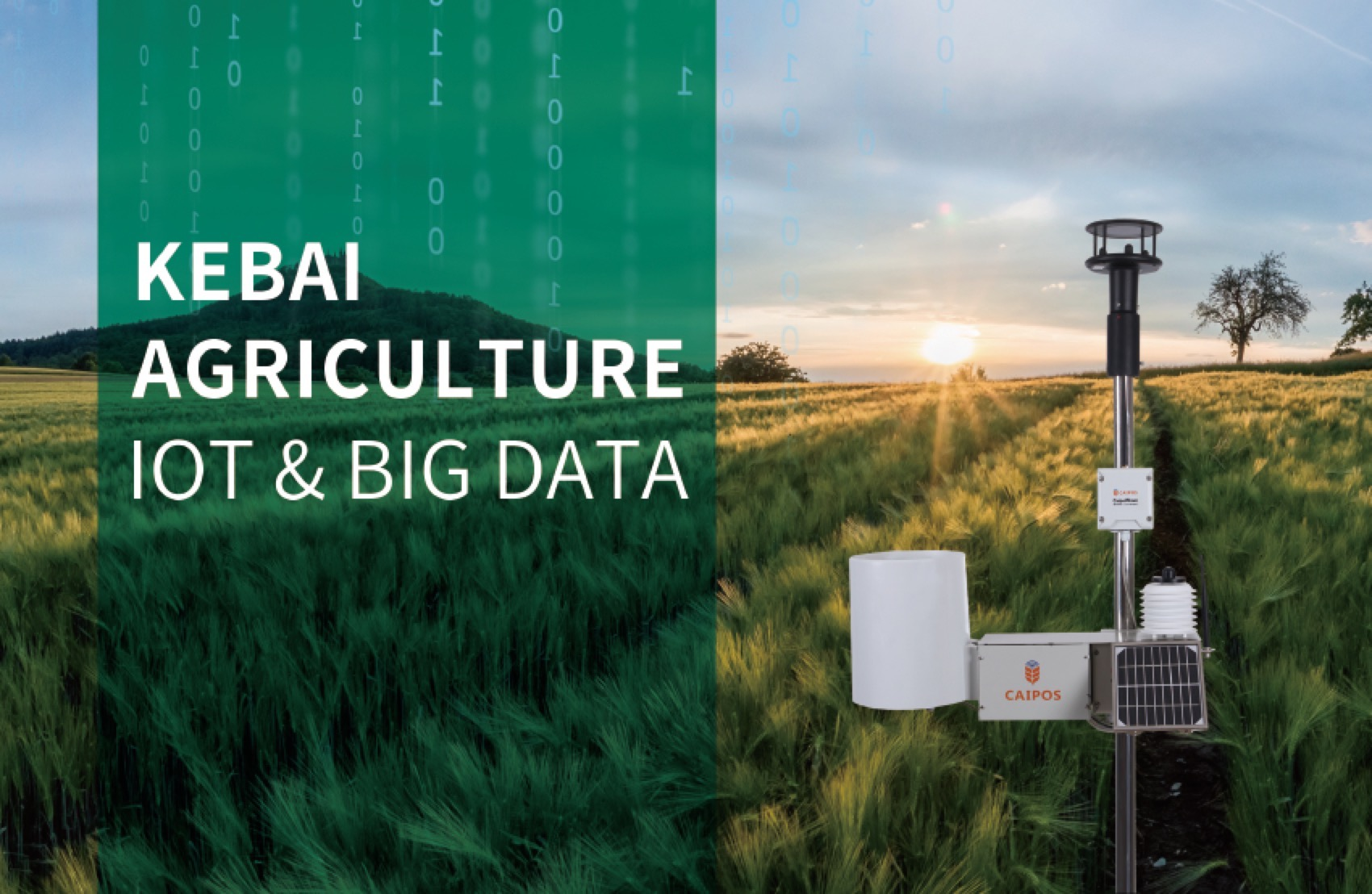 Kebai: Agriculture IoT and Big Data
